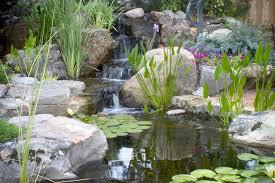 Aquascape Ponds Small Ponds Pack A Punch Aquascape Inc