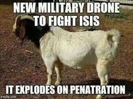 Freedom Meme - freedom memes tag terror