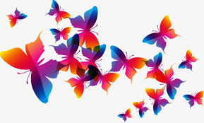 colorful butterfly pattern element color butterfly design