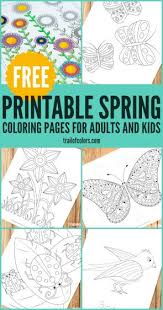 coloring pages for adults archives trail of colors