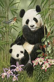 panda garden of auburn home auburn maine menu prices