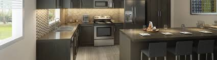 Kitchen Cabinets Edmonton New Townhomes Edmonton Sw Essence In Windermere Cove