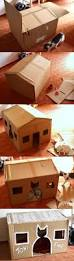Cardboard House Best 25 Cardboard Cat House Ideas On Pinterest House Of Cat