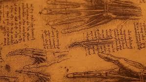 close up of old anatomy drawings by leonardo da vinci stock