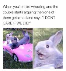 Angry Bunny Meme - dopl3r com memes when youre third wheeling and the couple