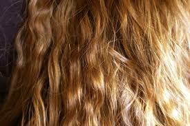 images of hair it s a blond thing stanford researchers suss out molecular basis