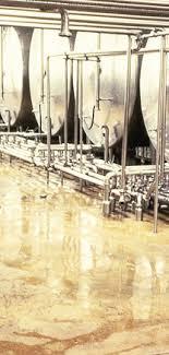 water resistant flooring flooring options that are water resistant