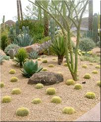 outstanding stone landscaping ideas with garden ideas desert landscape ideas for front yard desert