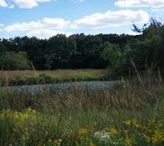 plant communities environmental nature center darker than green nature writing