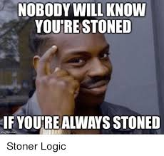 Stoned Meme - hini dywill nobody will know you re stoned if you re always stoned