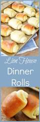 Home Interior Lion Picture Best 25 Lions Home Ideas On Pinterest Paper Plate Animals