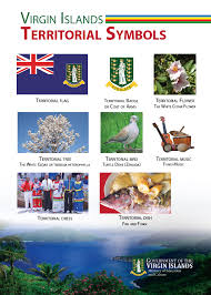 Virgin Islands Flag Virgin Islands Symbols Government Of The Virgin Islands