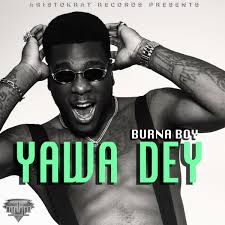 boy photo album burna boy albums songs discography biography and listening