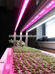 hydroponic led grow lights 2015 vertical hydroponic 3w leds grow light vertical farming led
