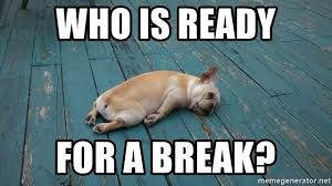 Meme Generator Dog - who is ready for a break passed out dog meme generator