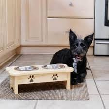 acrylic dog ring holder images Dog feeders waterers find great dog supplies deals shopping at jpg