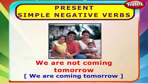 present simple negative verbs english grammar exercises for kids