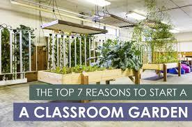 the top 7 reasons to start a classroom garden