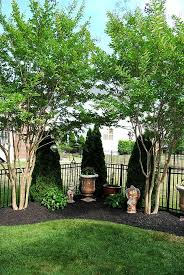 Backyard Gardening Ideas by 25 Best Corner Landscaping Ideas Ideas On Pinterest Corner