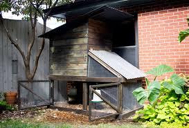 Building Backyard Chicken Coop Our Diy Urban Backyard Chicken Coop