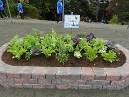 sensory taste garden sensory garden ideas pinterest sensory