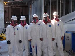 protective clothing for mold removal and remediation safety