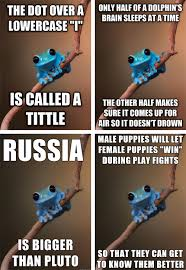 Fact Frog Meme - small facts frog album on imgur