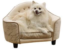 american eskimo dog calgary enchanted home pet french script headboard dog bed u0026 reviews wayfair