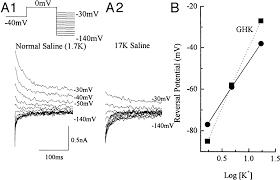 component mv to v articles journal of neurophysiology 40 mv to v