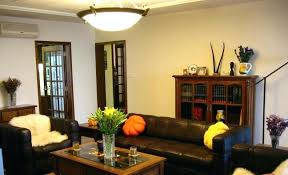 Lighting For Living Room With Low Ceiling Living Room Ceiling Lighting Fixtures Pendant Lights Interesting