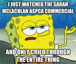 Aspca Meme - spongebob aspca commercial aspca commercial parodies know your