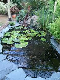 raised pond ideas outdoortheme com