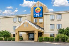 Comfort Inn Carbondale Co Comfort Inn East Evansville In Hotel