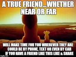 True Friend Meme - lion king meme imgflip