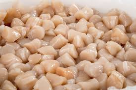 fresh wild cape cod bay scallops