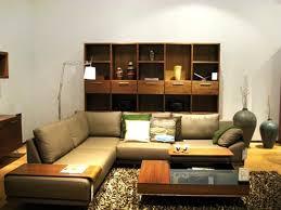 Cool Apartment Ideas Download Cool Apartment Furniture Gen4congress Com