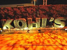 3 reasons why kohl u0027s is sinking business insider