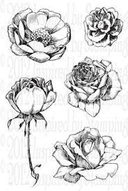 rose design of tattoos rose flower tattoo drawing sketchy flower