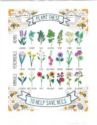 bee keeping village of ossining