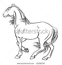 standing horse stock images royalty free images u0026 vectors