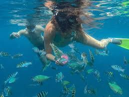 Kansas Snorkeling images Best deal 3 spot snorkeling day trip to nusa lembongan nusa jpg