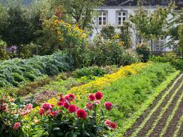 preparing a new garden plot hgtv