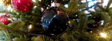 directons to cedar hill christmas tree farm cedar hill christmas