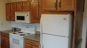 kitchen kitchen cabinet refrigerator kitchen cabinet refrigerator