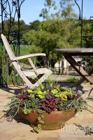 29 best containers images on pinterest garden container