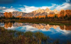 Wyoming vegetaion images Trees mountains viewes snake river the united states state of jpg