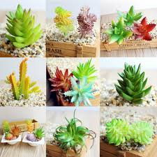 compare prices on office artificial plants online shopping buy
