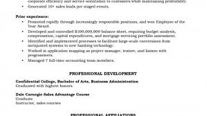 Account Executive Resume Example by Example Of Executive Resume Account Manager Resume Example
