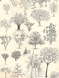 923 best trees artists images on drawing trees
