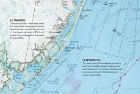 florida shipwrecks map map of ny seascape reveals a wildlife treasure trove treehugger
